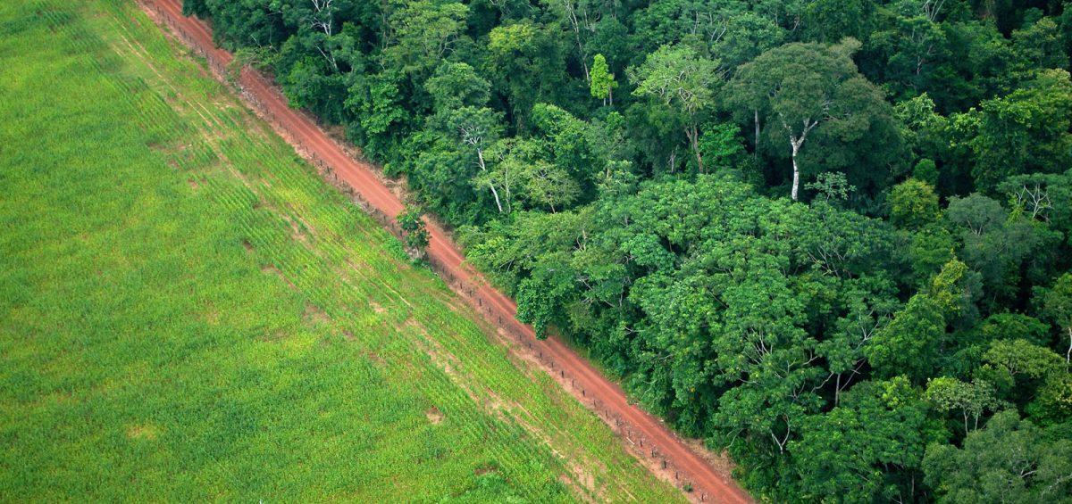 Uso de Drones no Cadastro Ambiental Rural